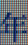 MBPANEL20081114_002914.jpg