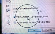 MousePhotp20090603_214820.jpg