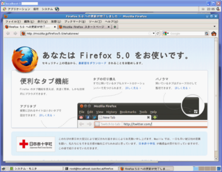 VPS_FIrefox5_2011-07-26_221244.png
